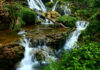 waterfalls-forest-landscape